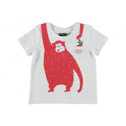 BBGORILLA Camiseta bebé boy